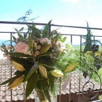 Composition poétique florale