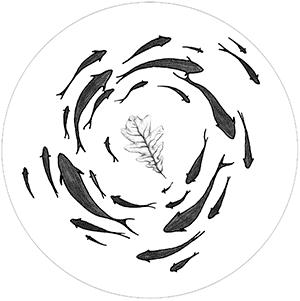 banc-de-poisson-feuille